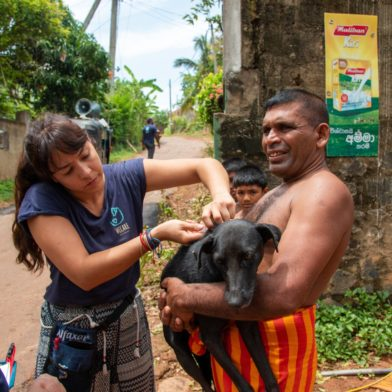 Rabies vaccination